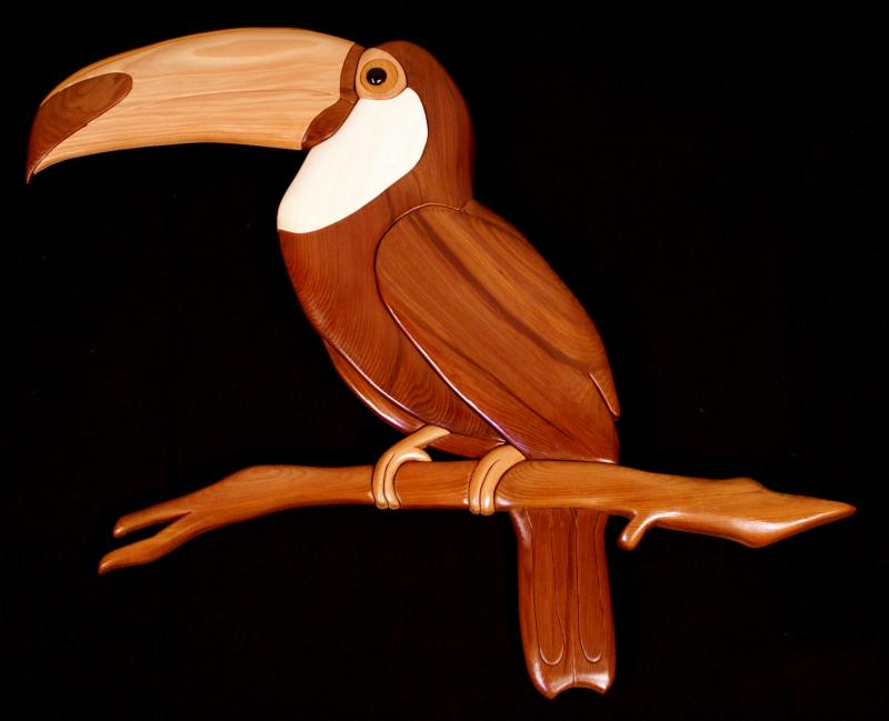 Toucan by Tim Rogers